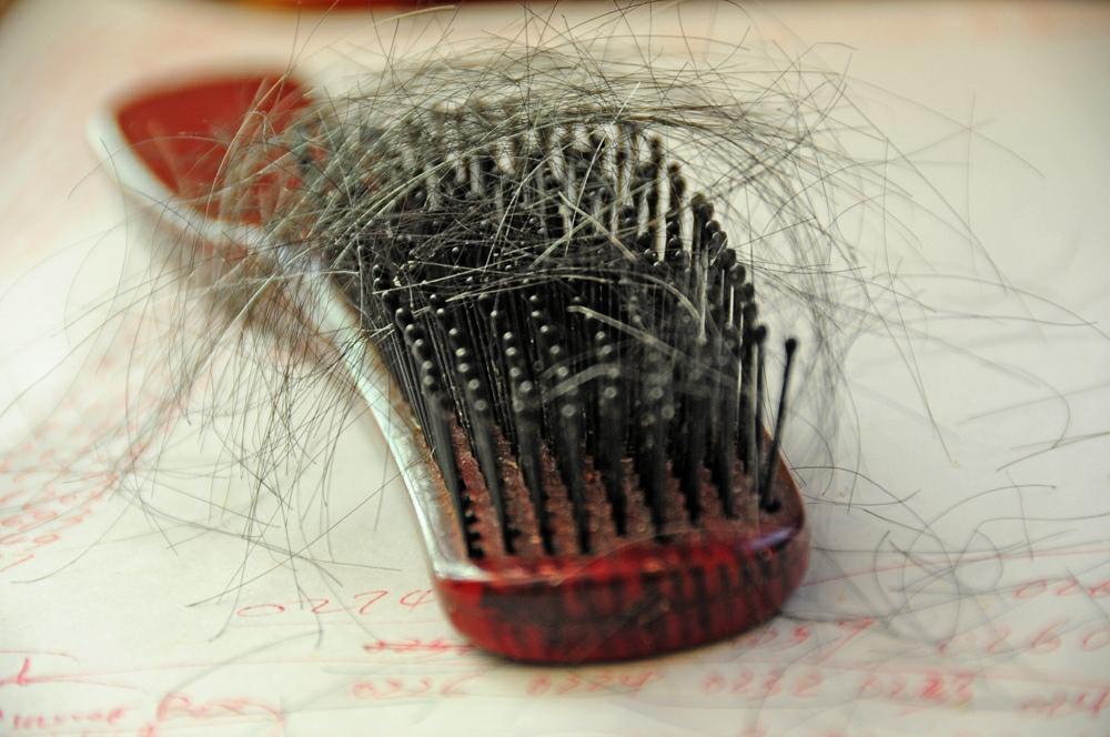 kozieradka na wypadanie i porost włosów