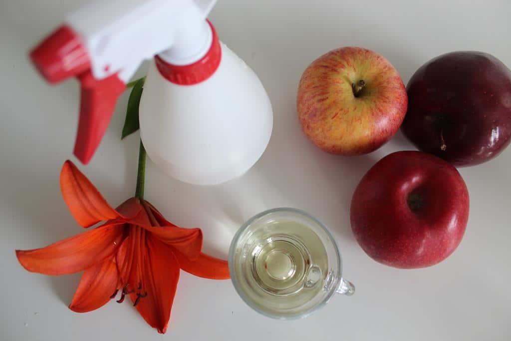 płukanka z octu jabłkowego