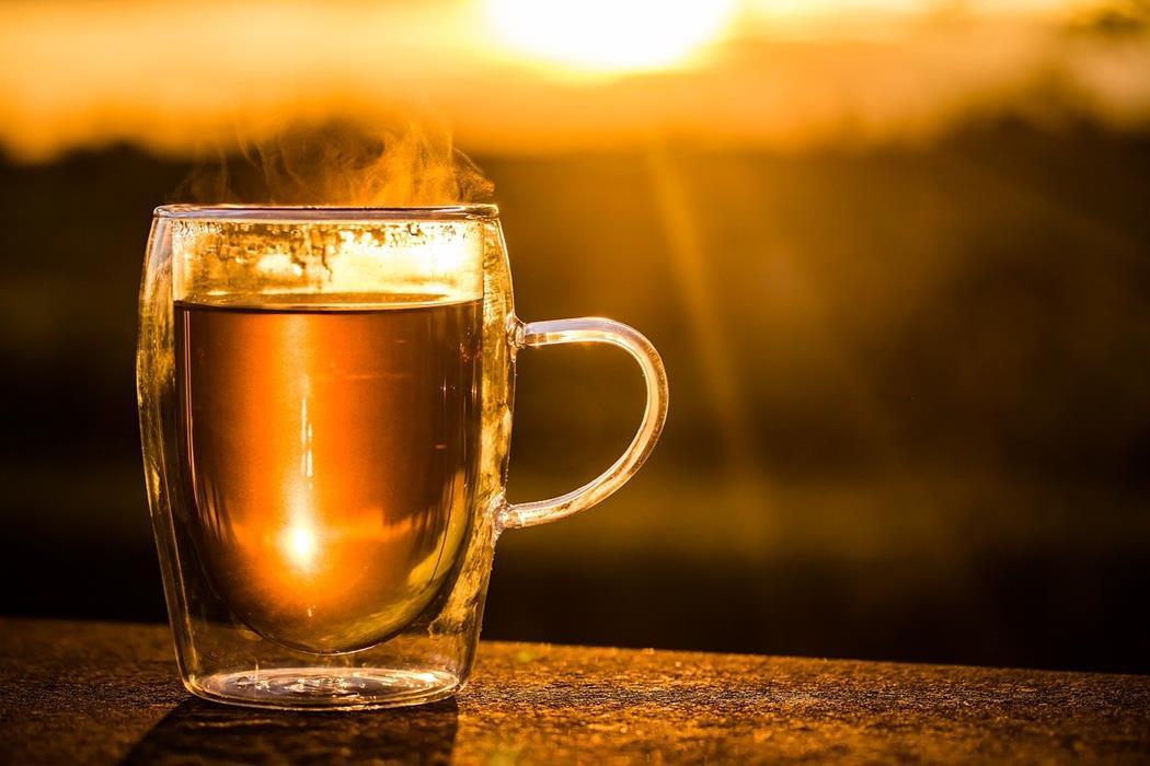Herbata ze skrzypu i jej wpływ na włosy