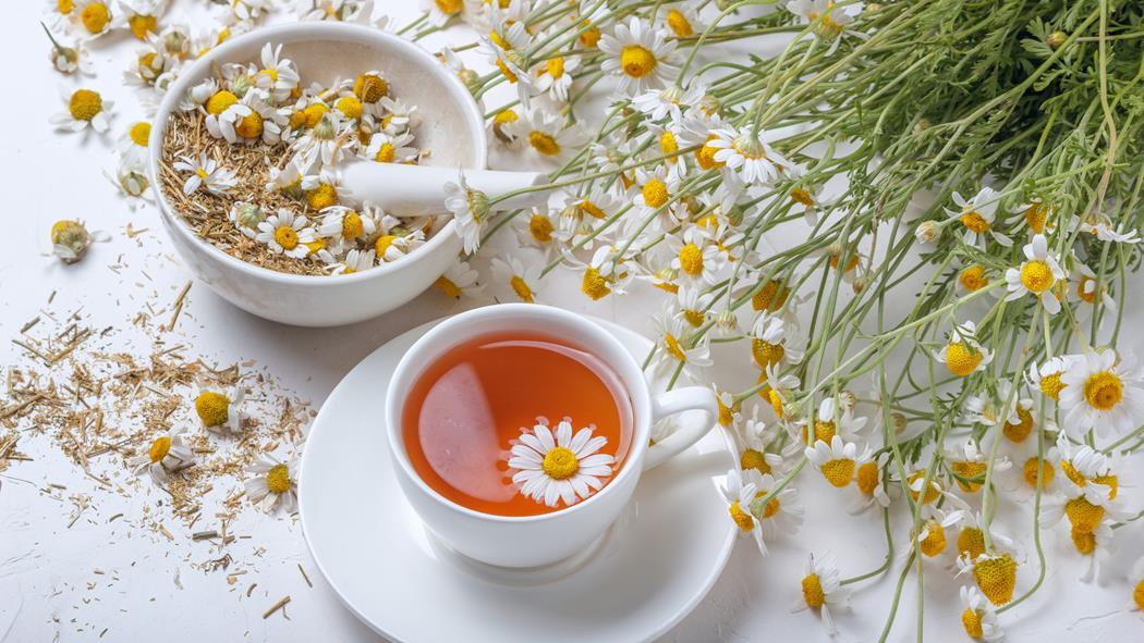 herbata z rumianku na włosy