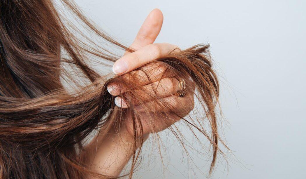 odżywione włosy