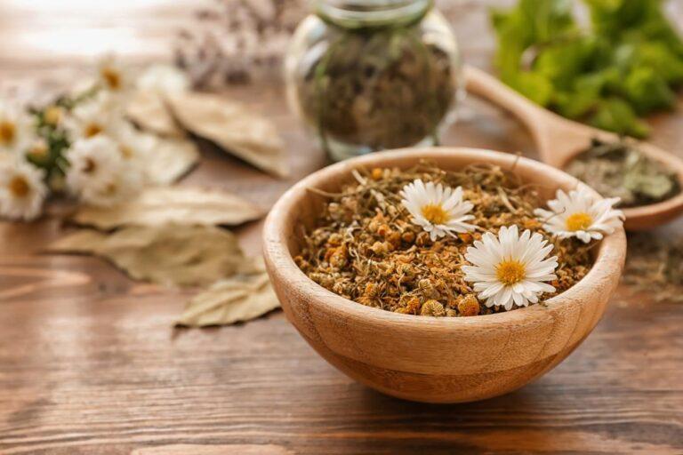 rumianek - susz ziołowy i kwiaty